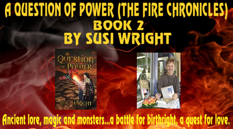 A Question of Power by Susi Wright